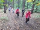nordic walking awfis_54