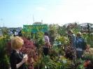 Grajmy w zielone 2012_08