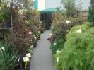 jesien w ogrodzie 2013_28