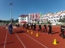 7 olimpiada tpg_113