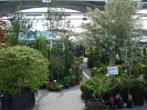 wiosna w ogrodzie 2014_042
